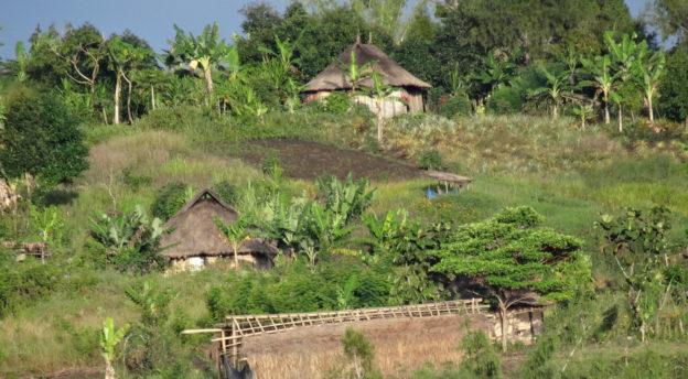 Papuauusiguinealainen kylä