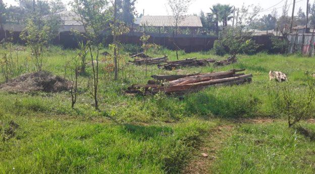 Jimman koulutuskeskus. Kuva: Alemayhu Kabbada